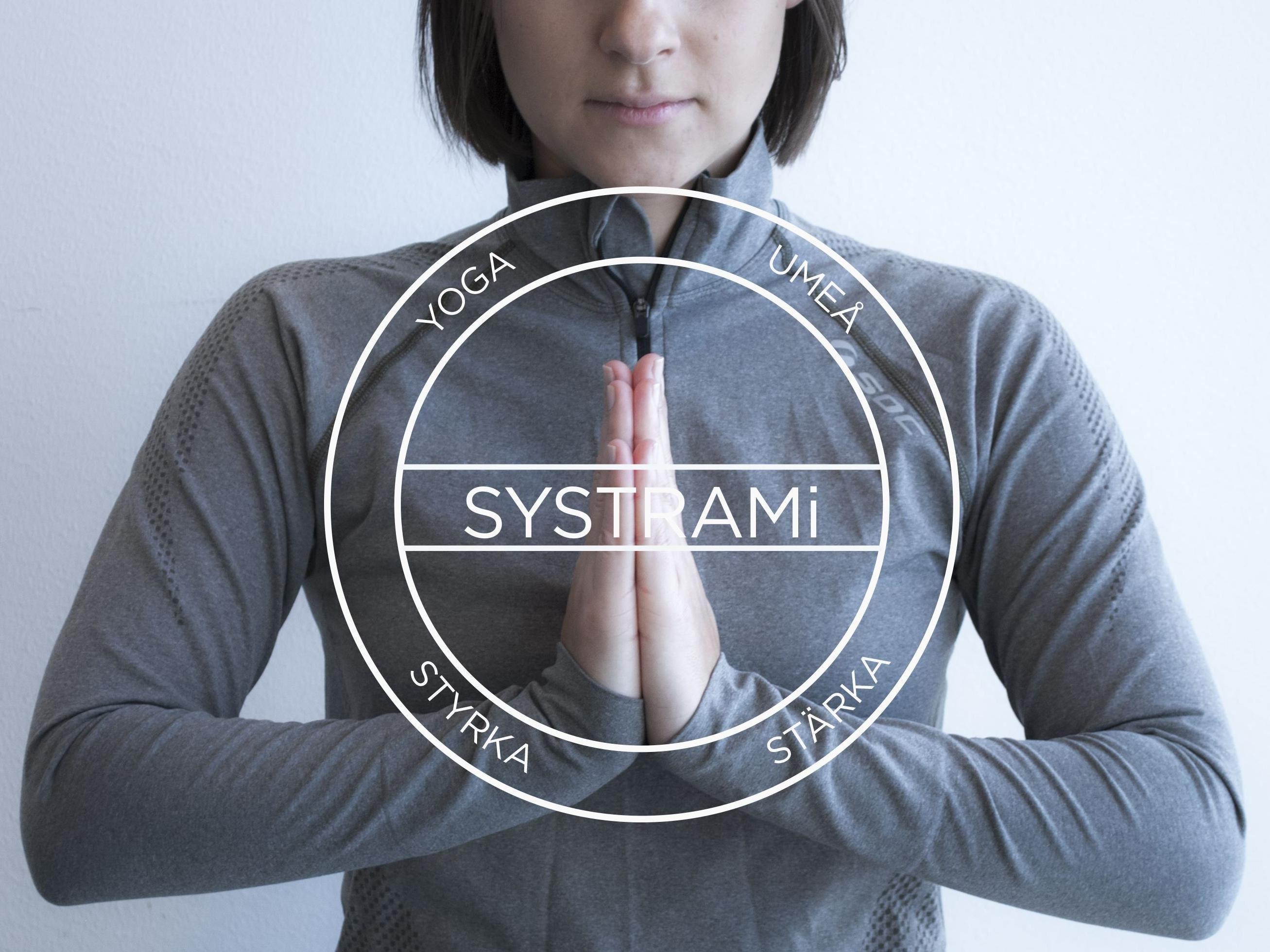 SYSTRAMi
