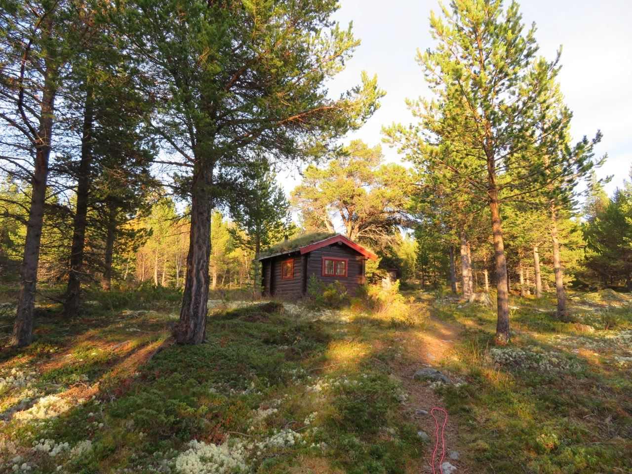© Dovre Fjellstyre , Hytteutleie i Dovrefjell og Grimsdalen statsallmenninger