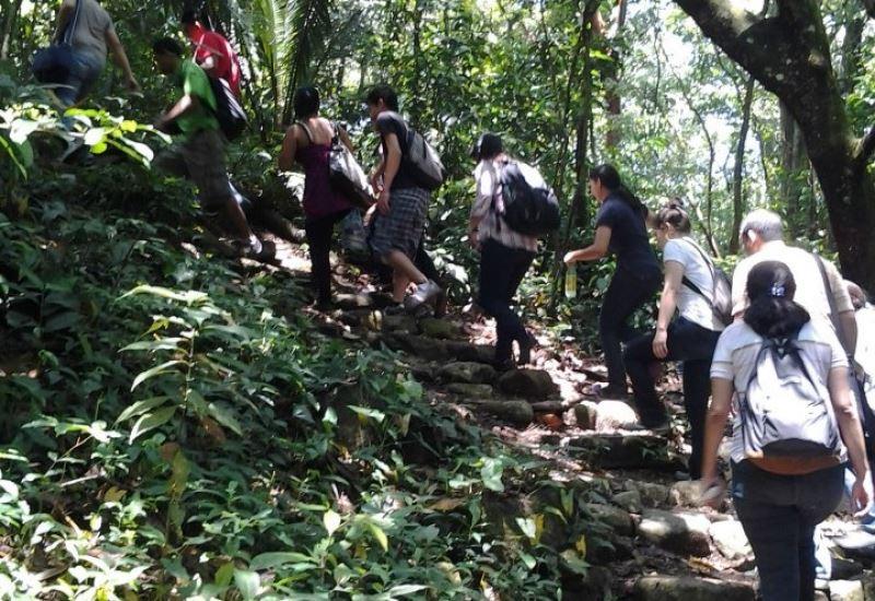 Guaruma Trail