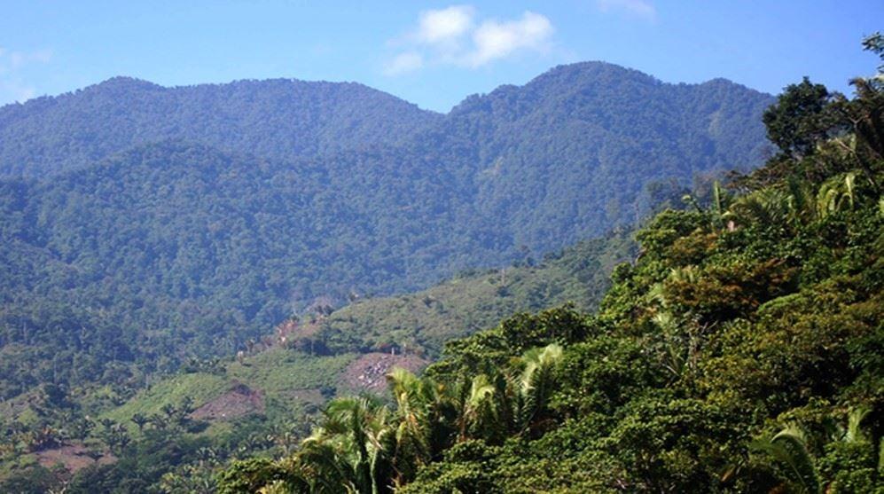 Explore the Mountain of Nombre de Dios on The Olvido Trail