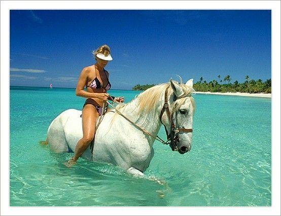Jungle Horseback riding Roatan