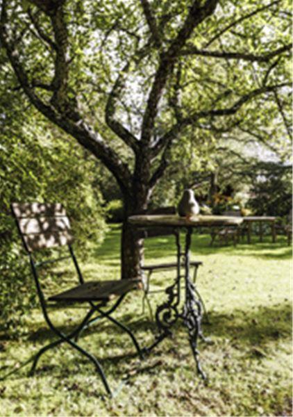 Cafébord och stolar under ett träd.