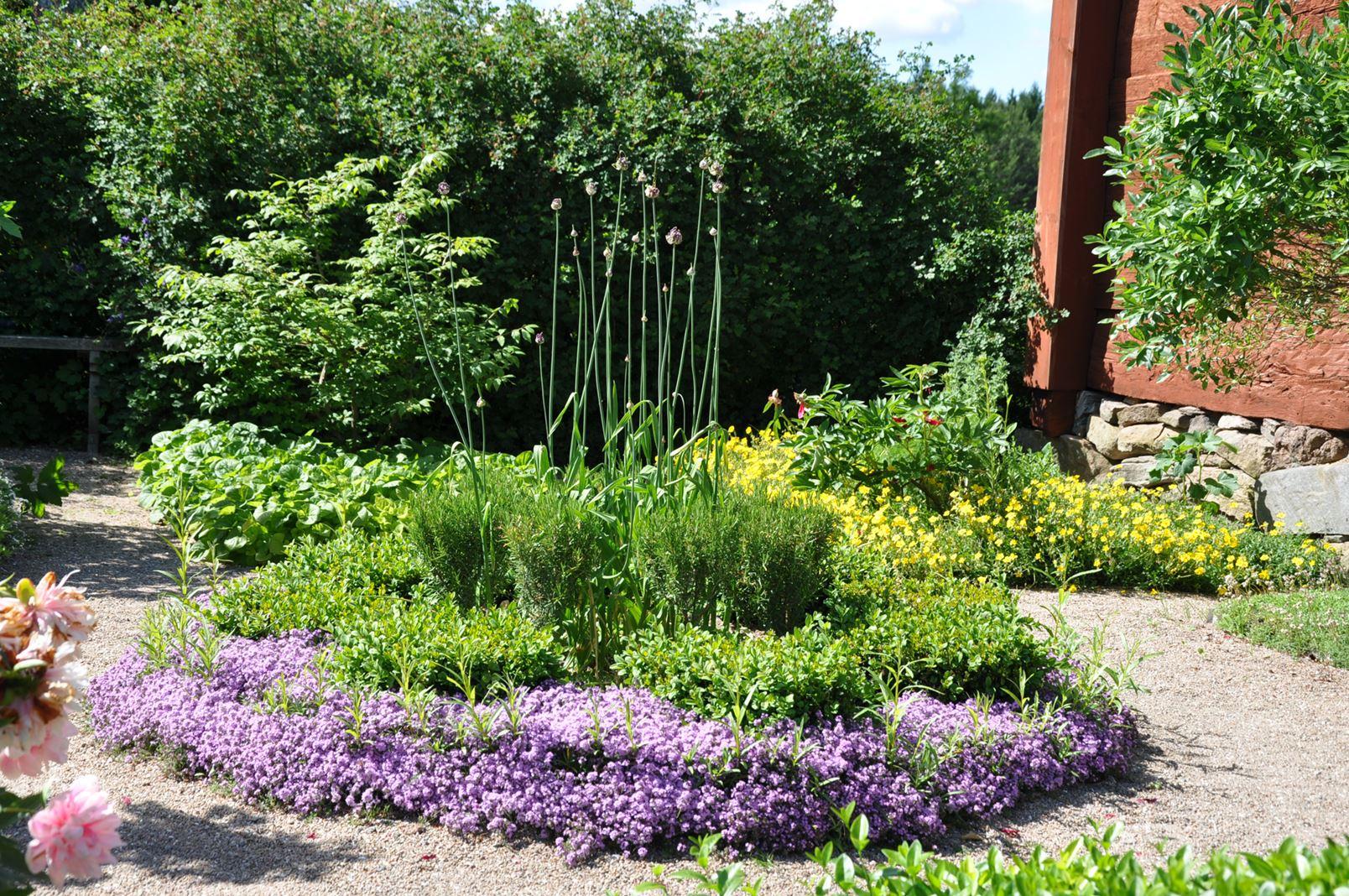 Garden walk at Linnés Råshult (copy)