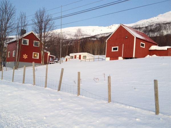Basecamp Djupvik – Overnatting og naturopplevelser