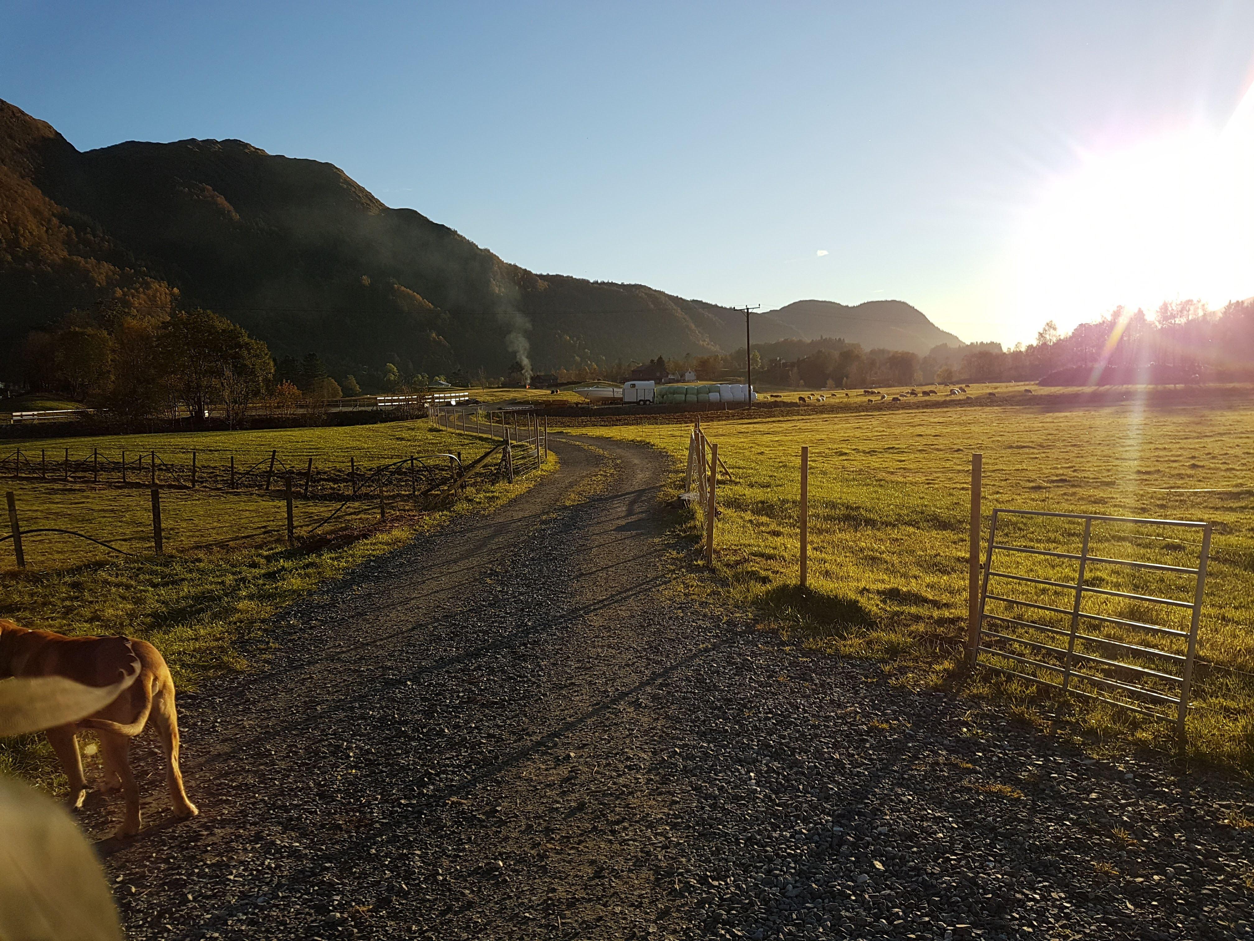 Solneset Gård. Parkering av bobiler og campingvogner.