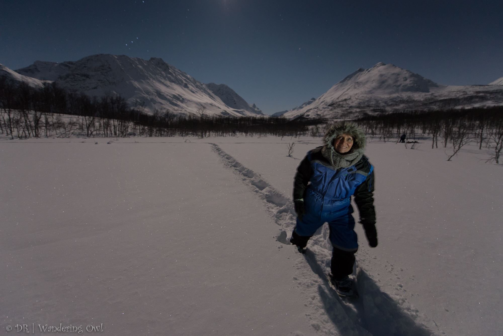 Star Walk – a night snowshoeing tour – Wandering Owl