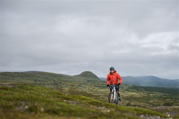 Mirja Lindberget, Liftburen cykling med guide