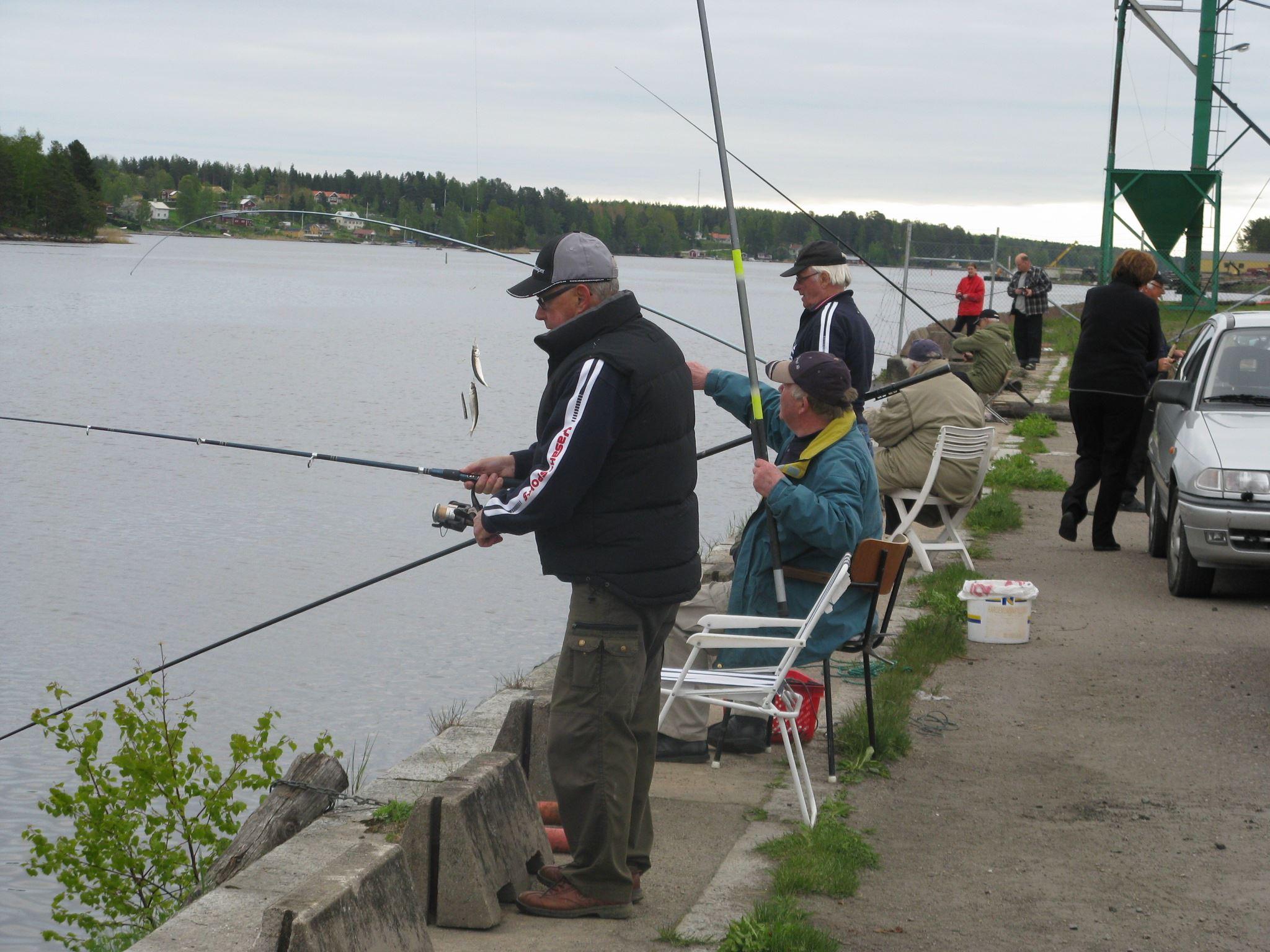 Strömmingsfiske vid Stugsundskajen