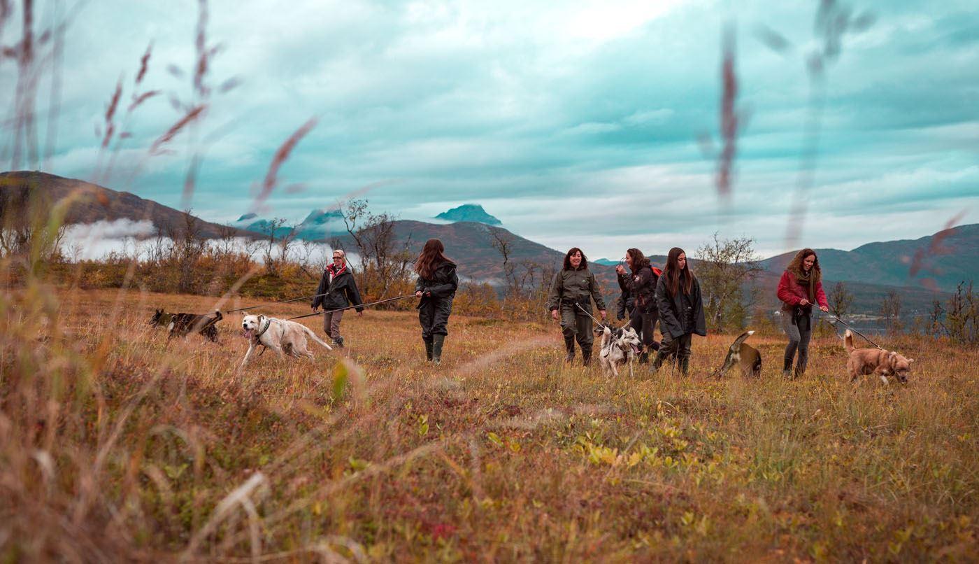 Aurora Husky Hike - Tromsø Villmarkssenter