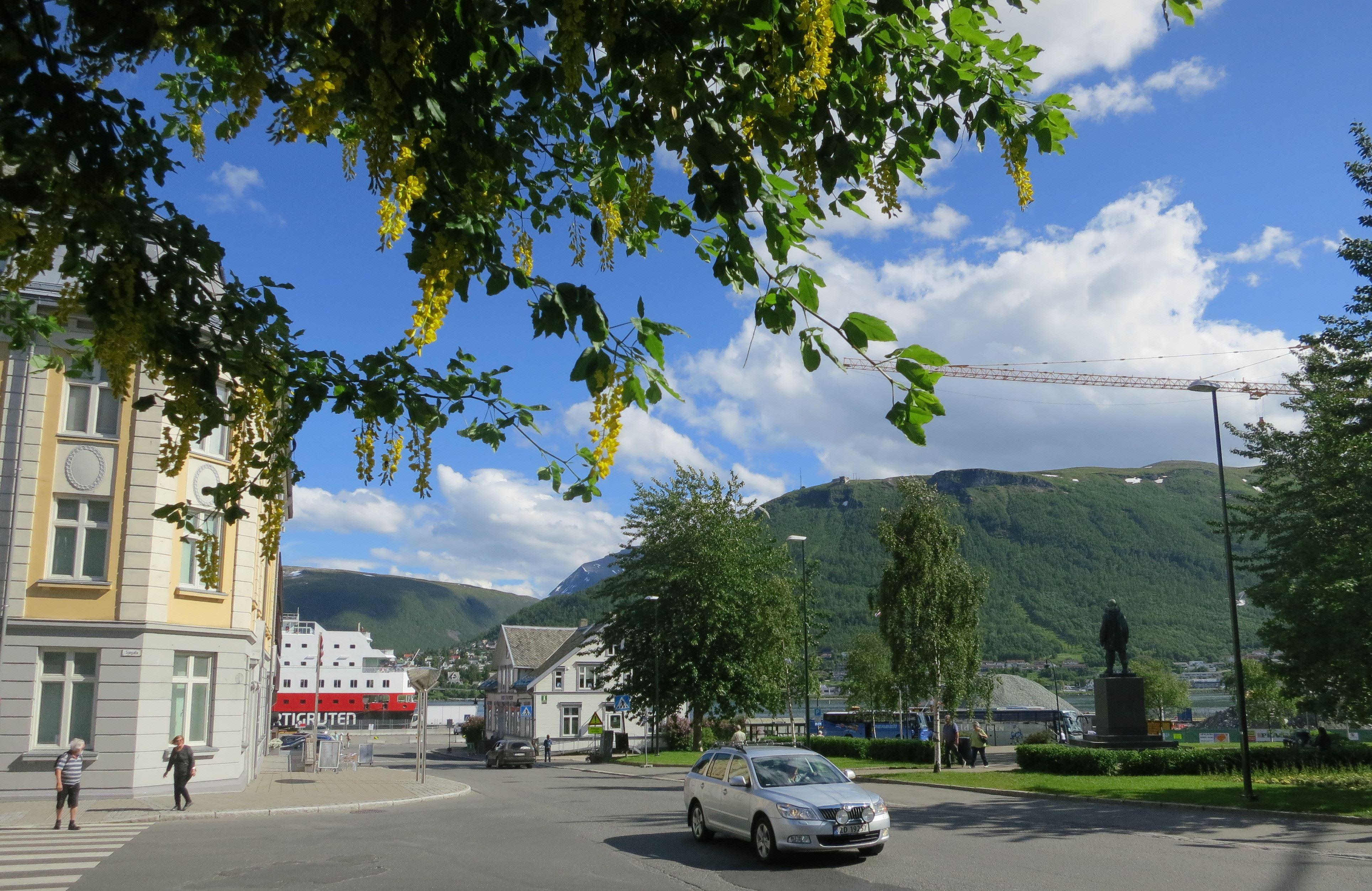 Essential Tromsø: Historial City Walk - Tromsø Budget Tours