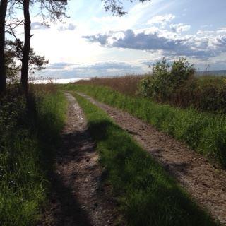 Vandring i Margit Fribergs fotspår