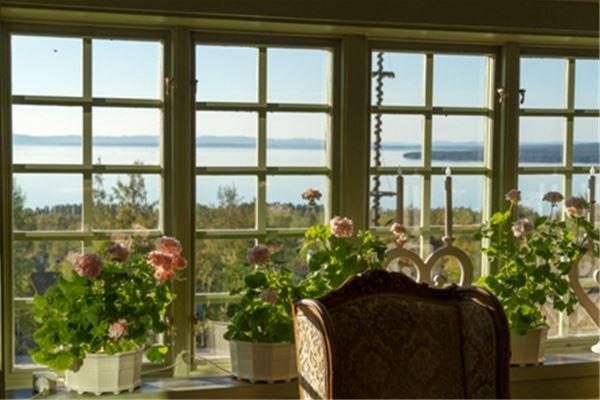Rosa pelargoner i spröjsade fönster med utsikt över Siljan.