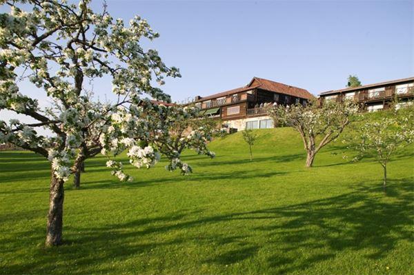 Blommande träd på en gräsmatta framför hotellet.