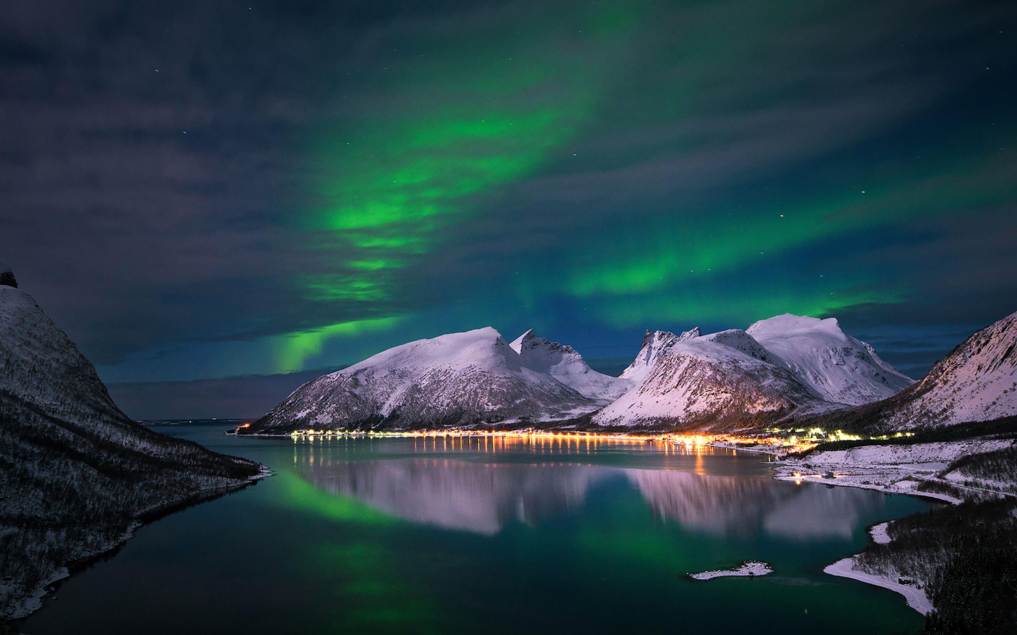 Magisk Arktisk vinter på Senja 2 netter med nordlystitting og natur/hval-safari  med båt - Hamn i Senja