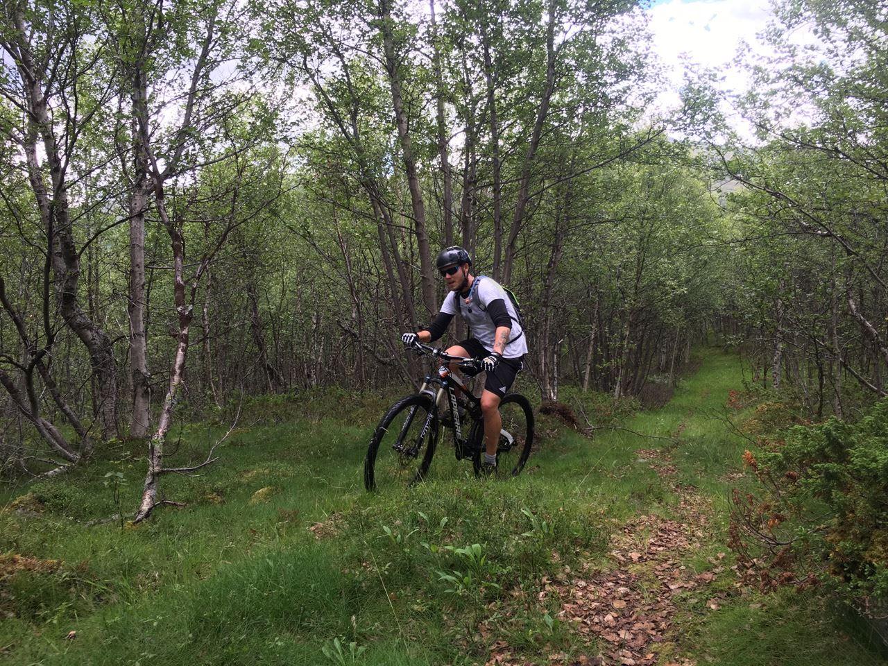 Lei sykkel hos Gjendesheim