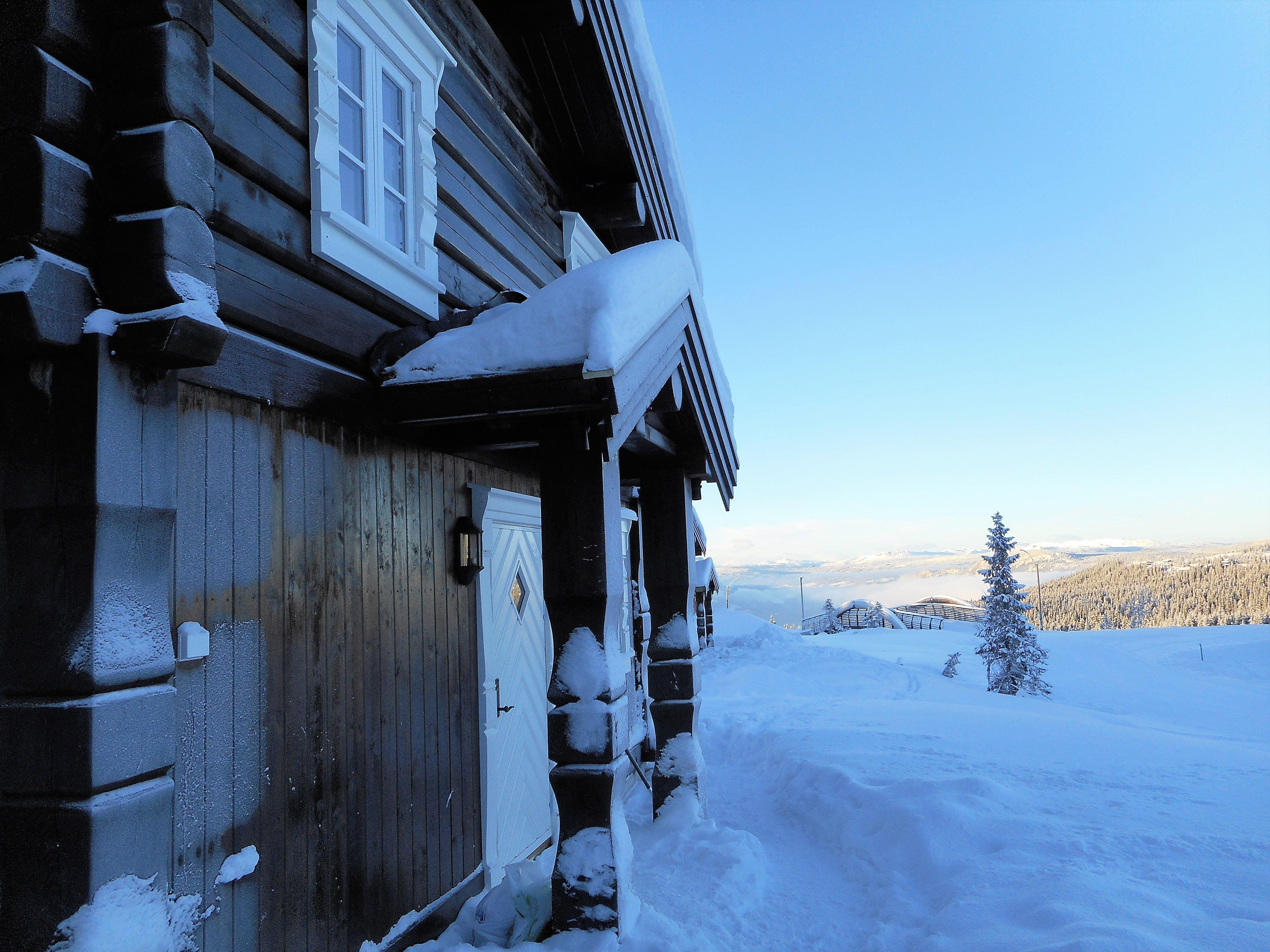 Mosetervegen 486 cottage