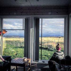 Bildet er tatt på insiden av Bird view apartments, der man ser ut fra to store vinduer, som her et rikt å fantastisk unikt fugleliv på utsiden.