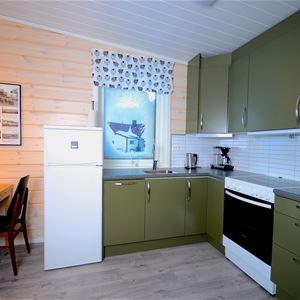 Bildet er tatt på innsiden av leiligheten. Det viser kjøkkenet, det er utstyrt med steikovn og kjøleskap.
