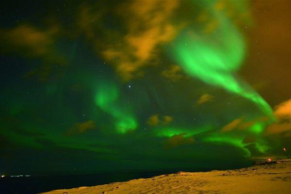 Nordlyset danser over himmelen, i nydelige farger i vinter mørket.