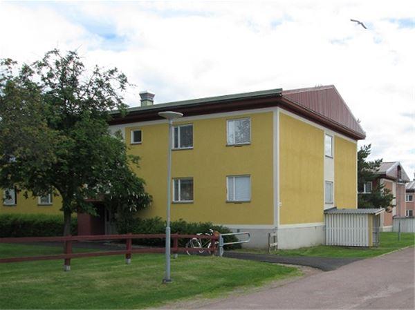 Vasaloppet Sommar. Privatrum M1, Monumentsvägen, Mora