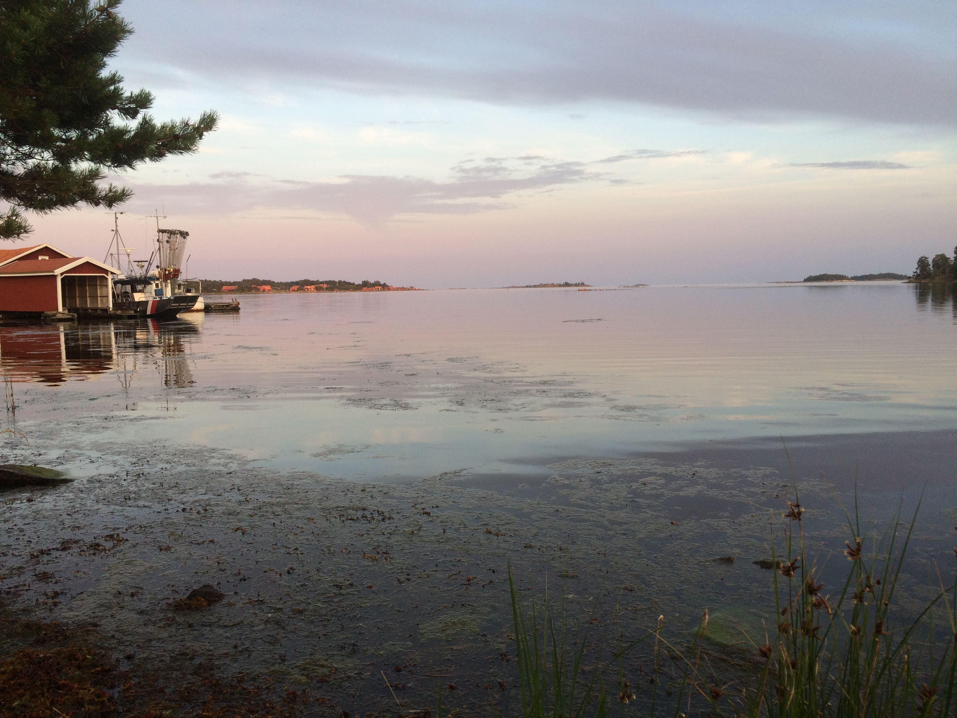 Scenen är Din / Musik i skärgårdskväll på Hasselö
