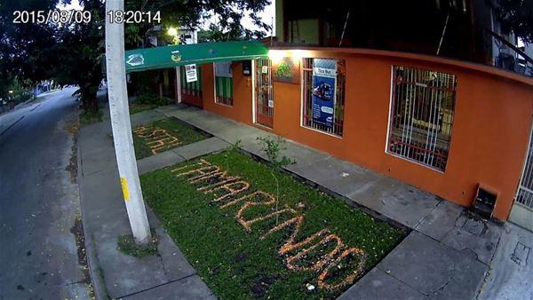 Hostel Tamarindo