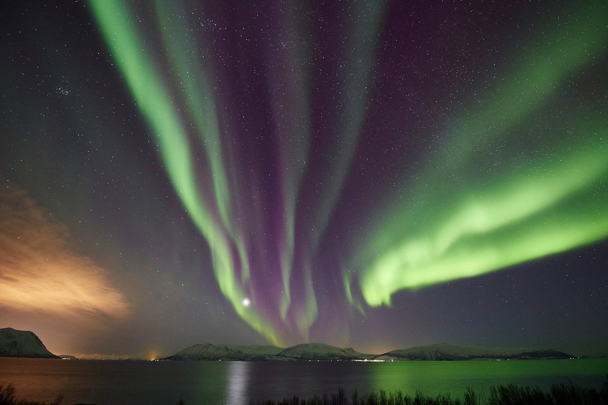 Northern Lights Photographic Excursion from Tromsø - Green Gold of Norway