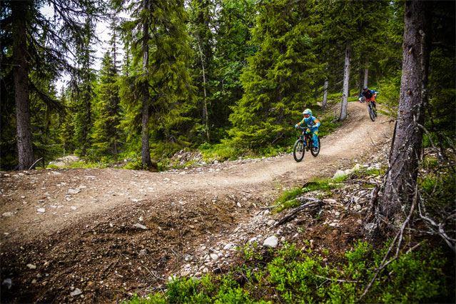 Led i Lofsdalen Bikepark