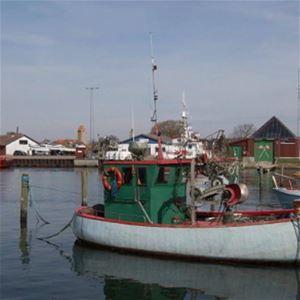 Gedser Fiskerihavn