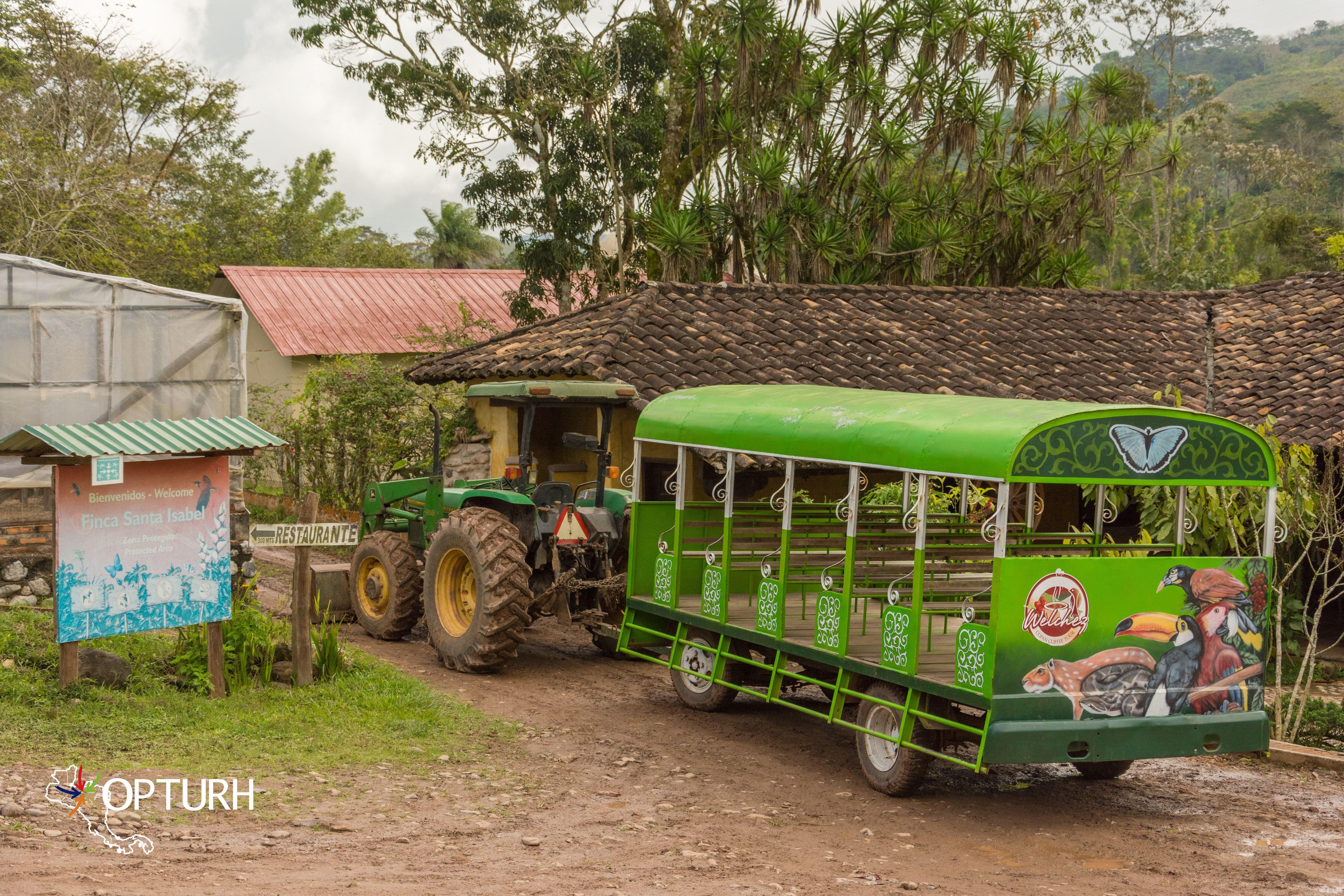 Copán Coffee Tour