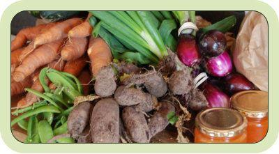 Norrgårdens Grönsaker