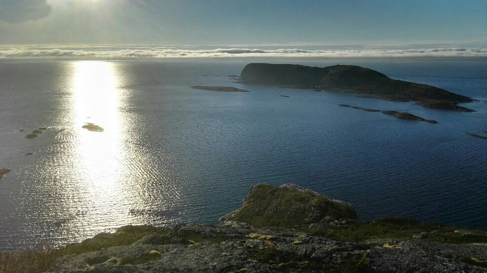 Fjord cruise and eagle safari by car and boat to Hekkingen «The island of the sea» - Northern Adventure Troms
