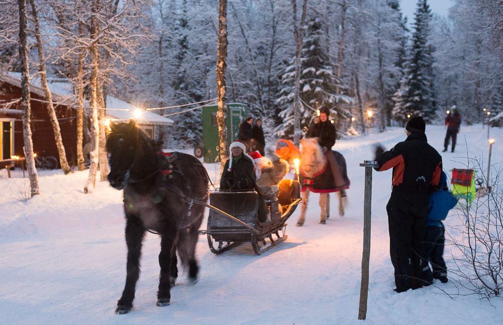 Julmarknad på Udden i Tärnaby