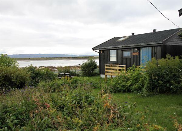 Bildet er tatt av hytten fra utsiden. Hytten er mørk brun. Det er grønt og frodig av gress og busker ute ved hytten. Havet vises å i bakgrunnen