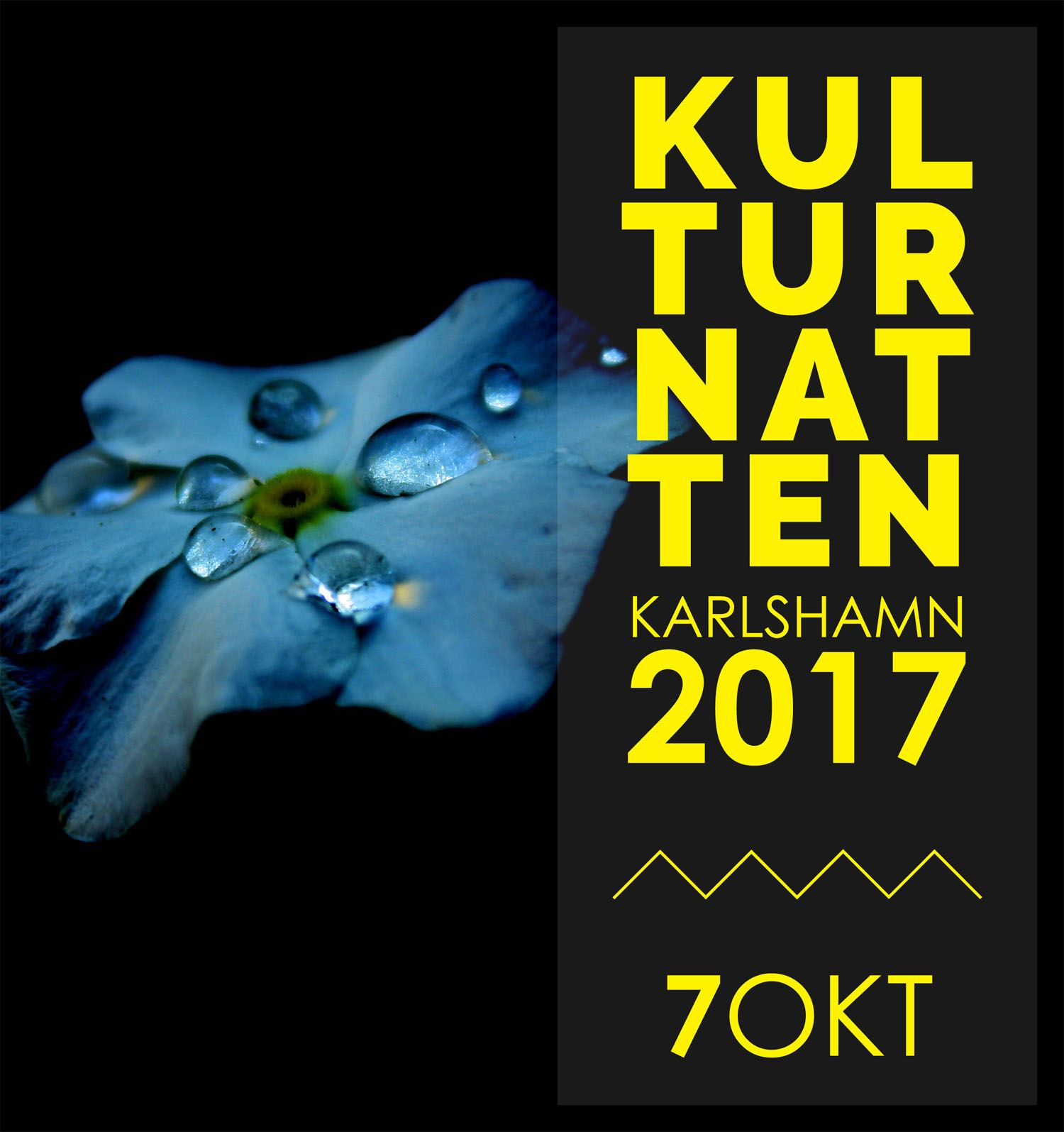Kulturnatten 2017