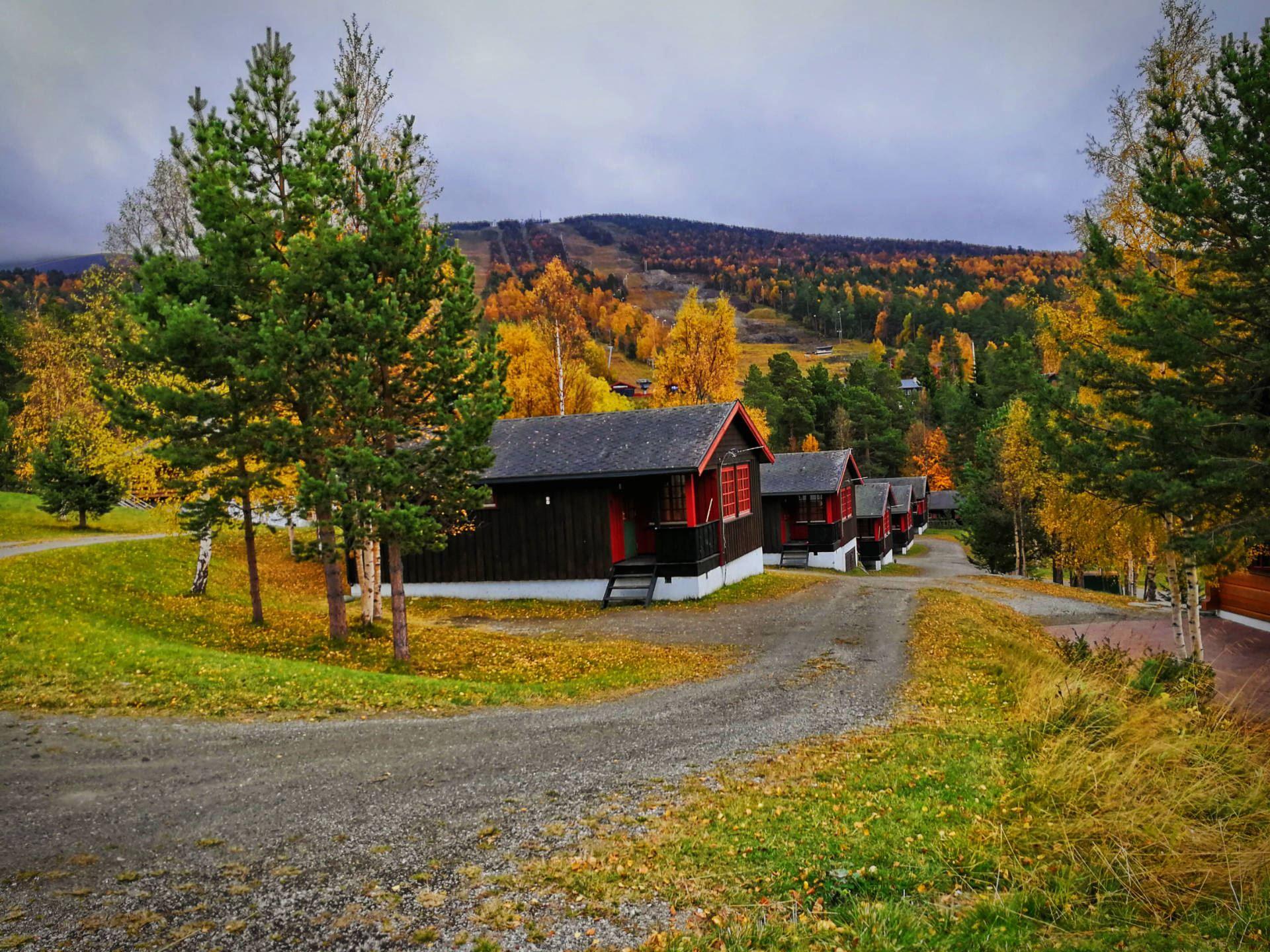 Nasjonalparkriket,  © Nasjonalparkriket, Trolltun Gjestegård Dombås