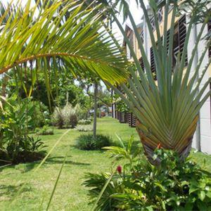 Tropic Appart***