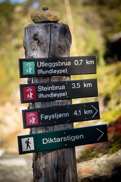 © Foto: Mari Valen Høihjelle, Foto: Mari Valen Høihjelle