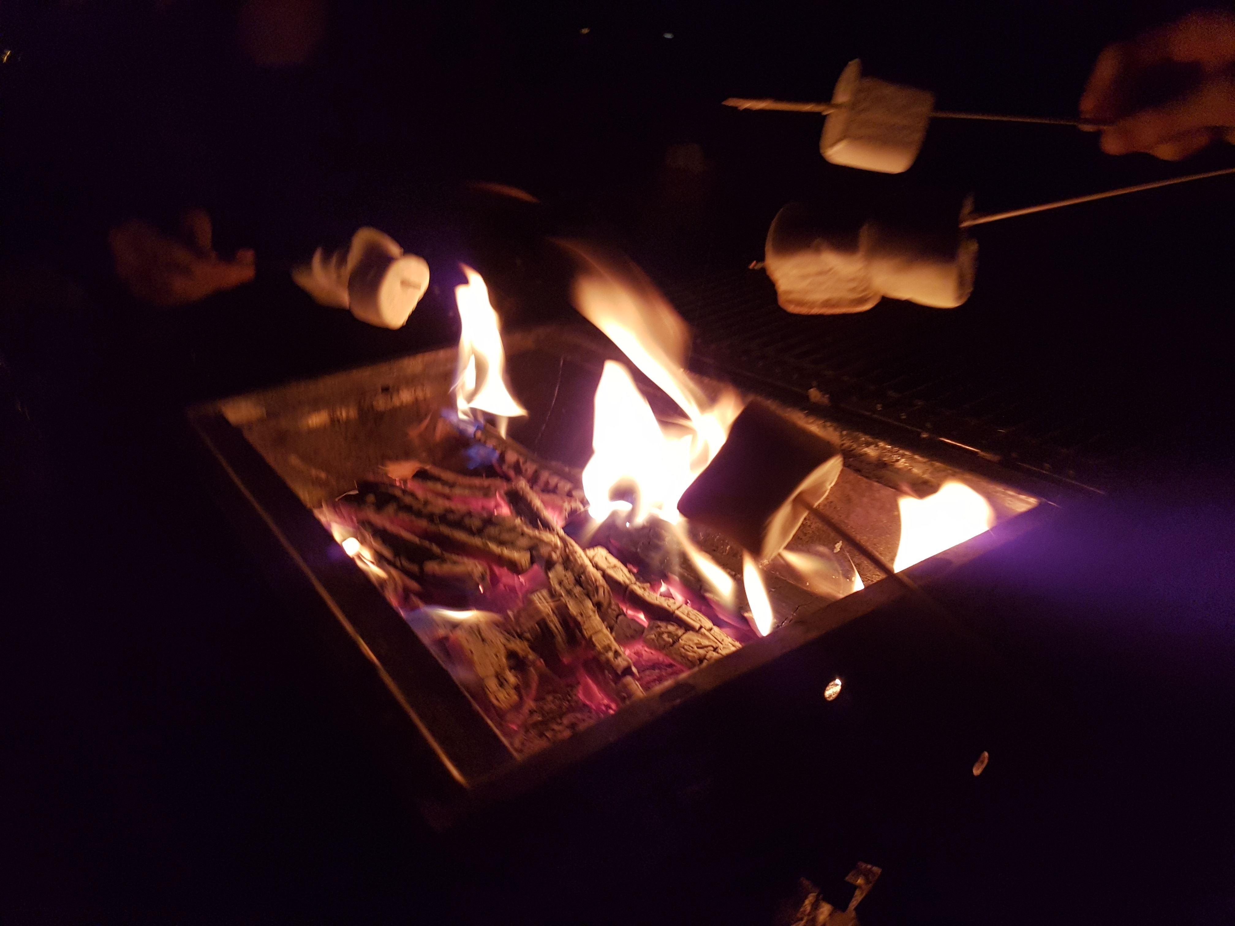 Höstlov 2017: Läger på Gläntan