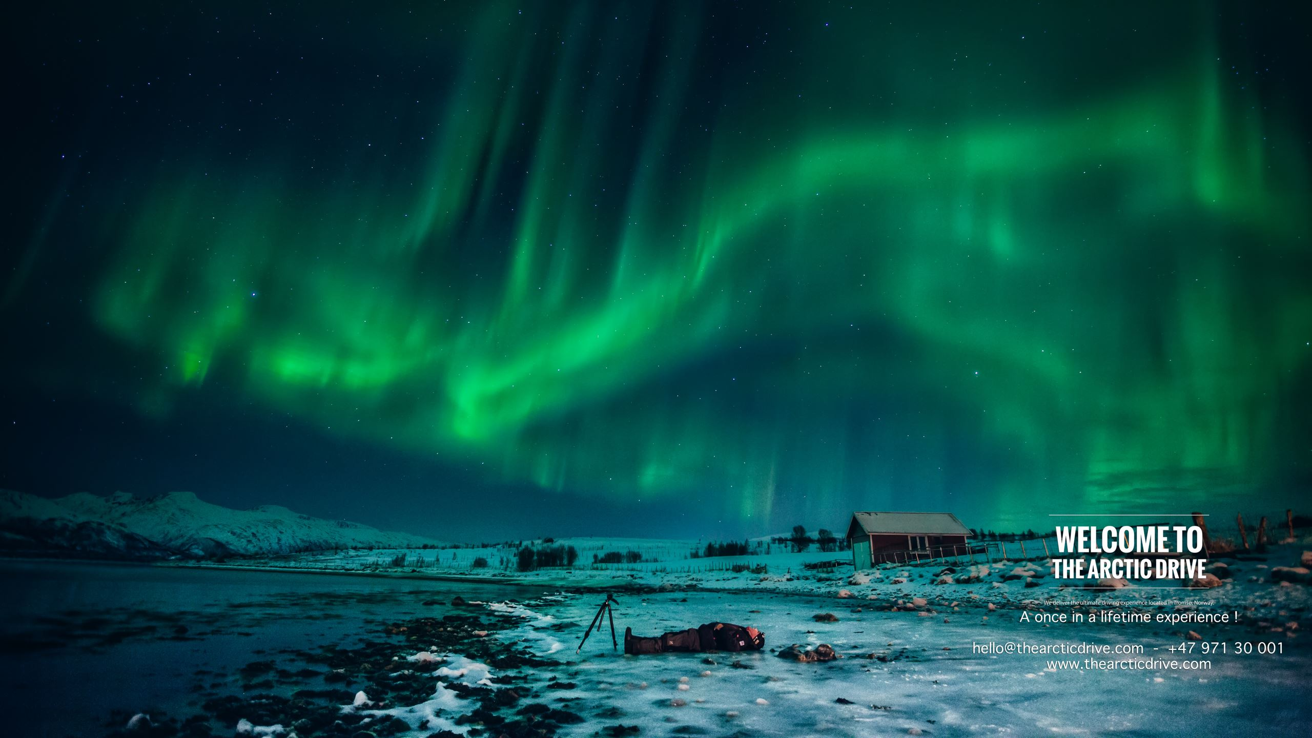 Luxury Minibus Northern Light tour - The Arctic Drive