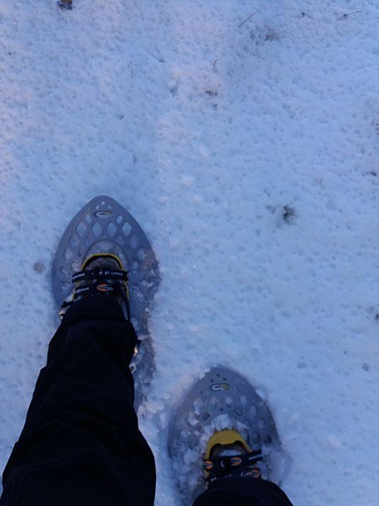 Hiking trip to Lapakisto | Best Lake Nature Adventures