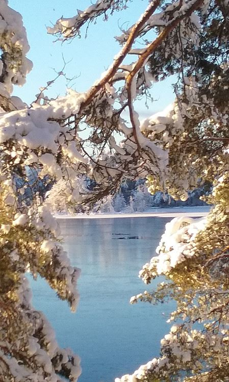 Silence of Winter Snow Shoe Trip | Best Lake Nature Adventures