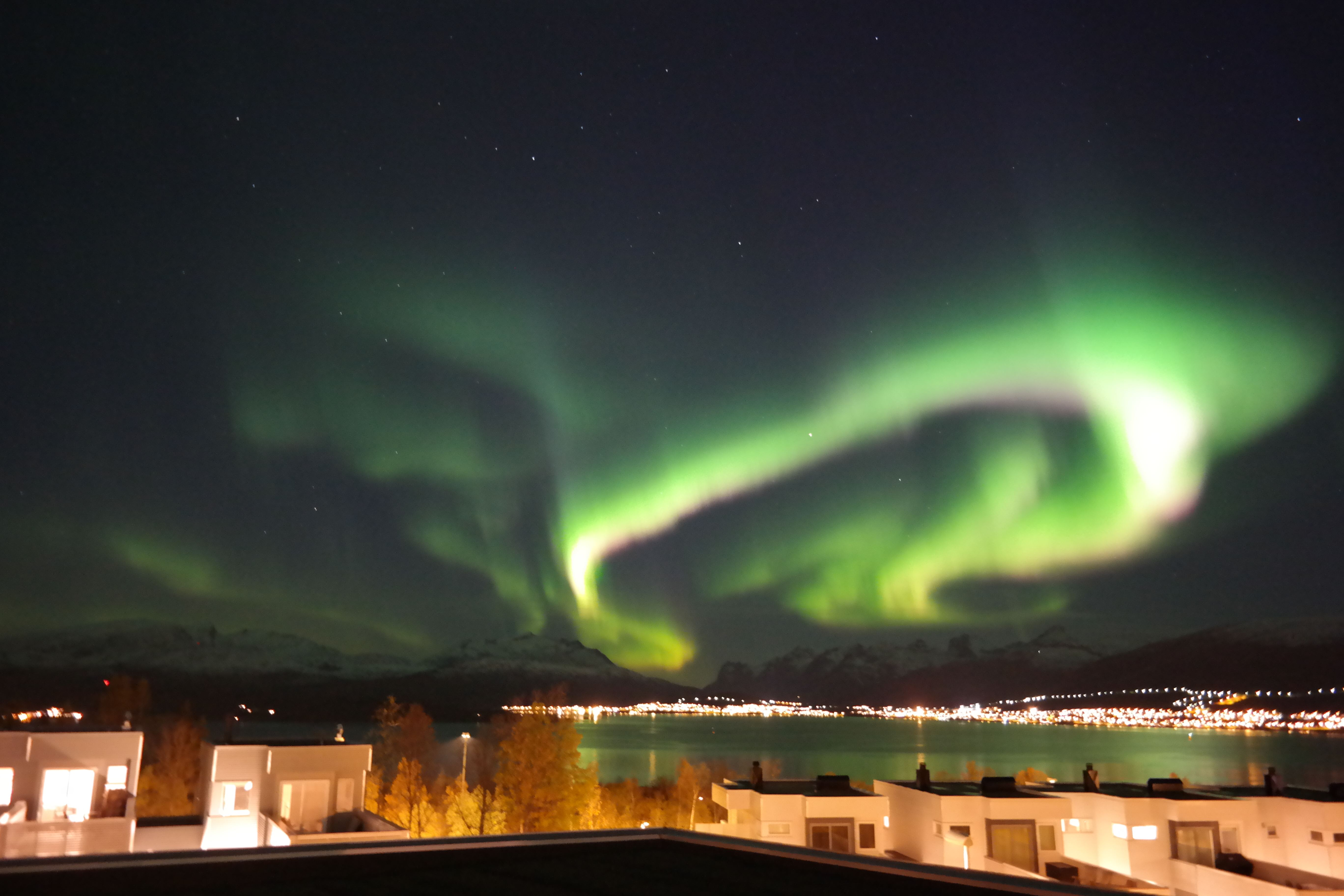 Northern Lights chase - Arctic Event Balsfjord