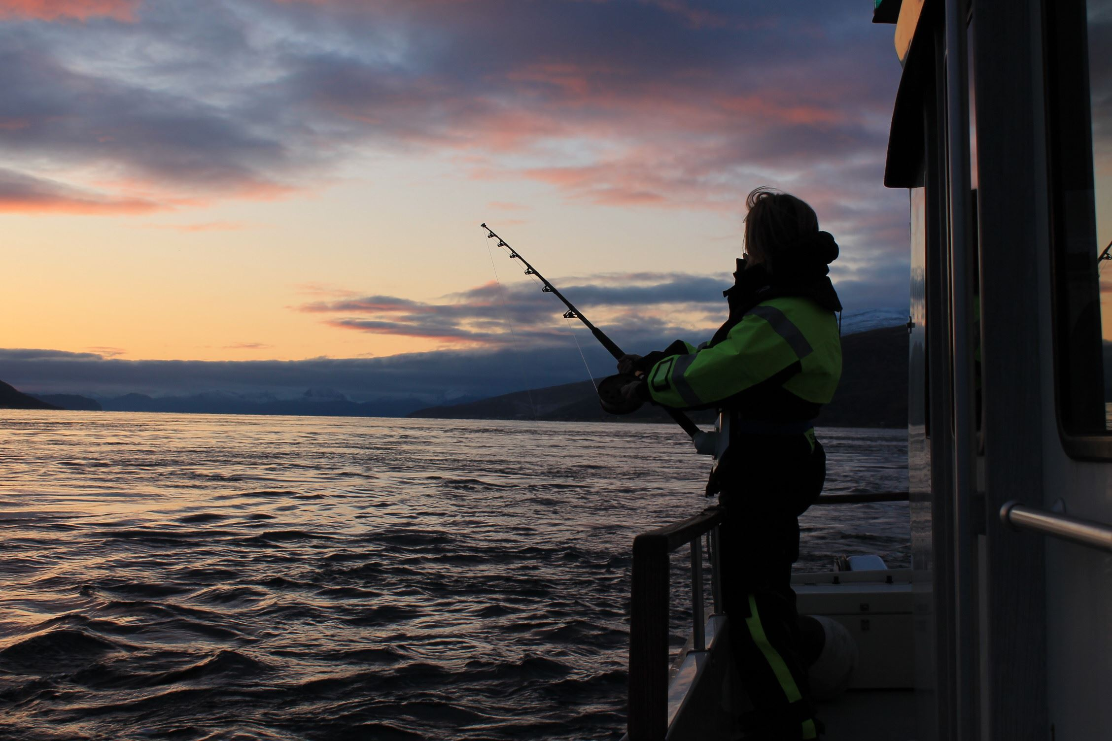 Fishingtour and fjordcruise in arctic nature - Northern Adventure Troms
