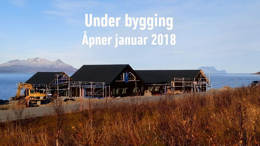 Northern Lights Safari in Lyngen - Lyngen Experience