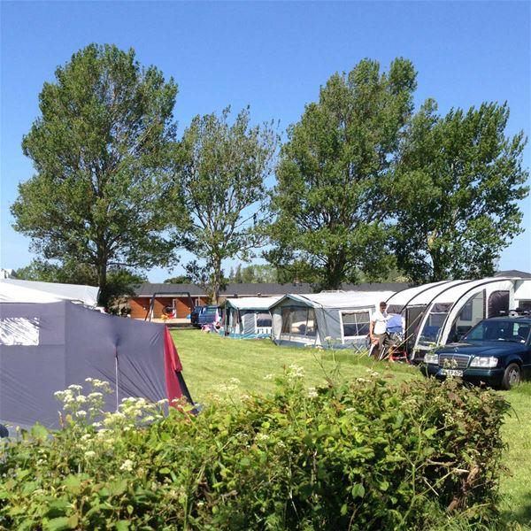 Universeophold på Drejby Strandcamping - egen vogn/telt
