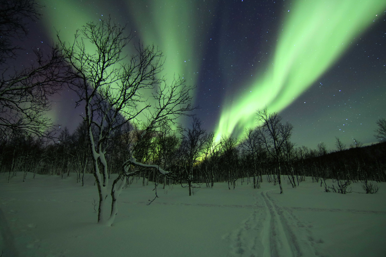 Overnatting under nordlyset (maks. 10 pers.) - Polar Cabin