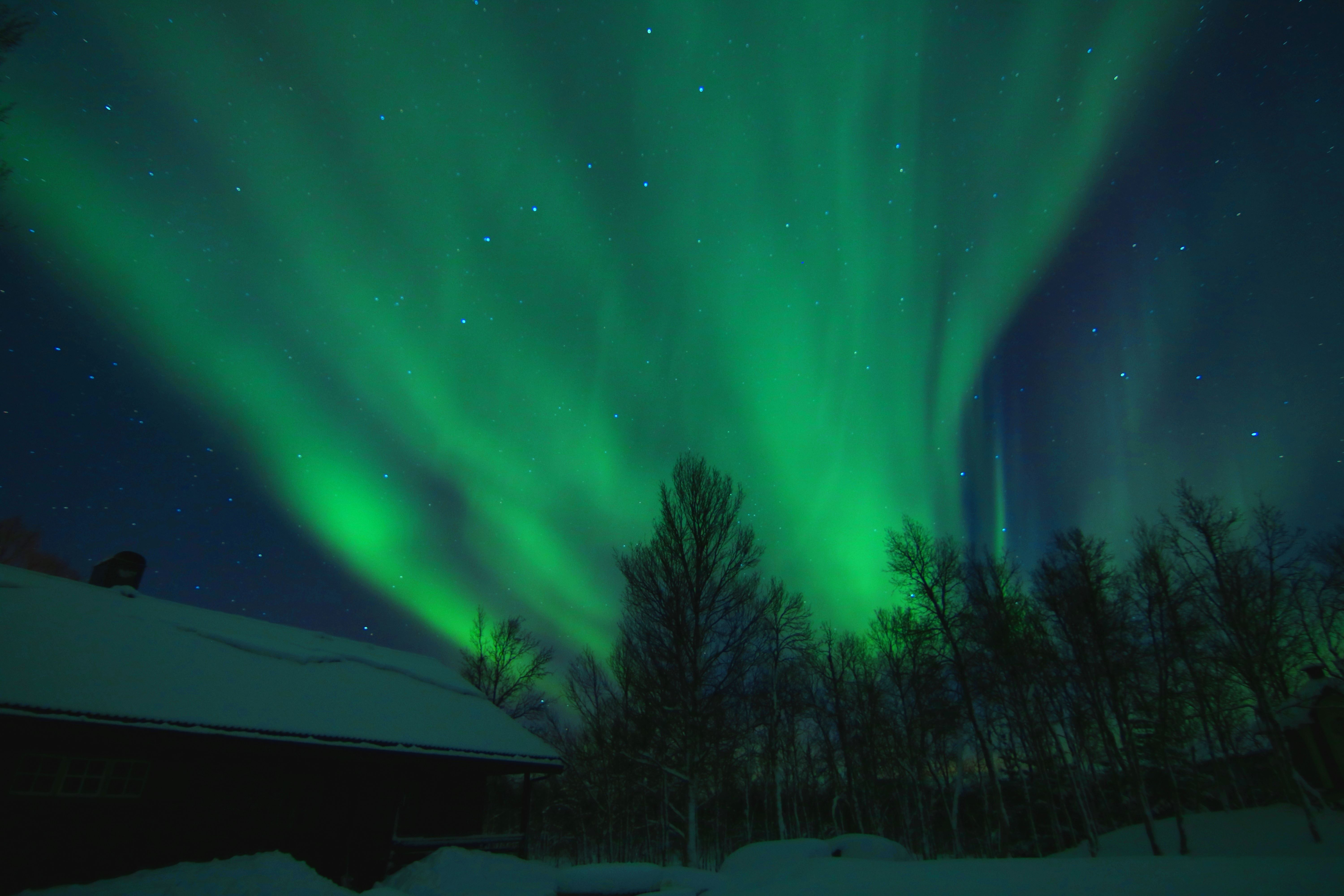 -SPECIAL OFFER- Northern Lights overnight at Polar Cabin with Snowshoeing/Hiking -All included- Max. 10 pers.- Polar Cabin