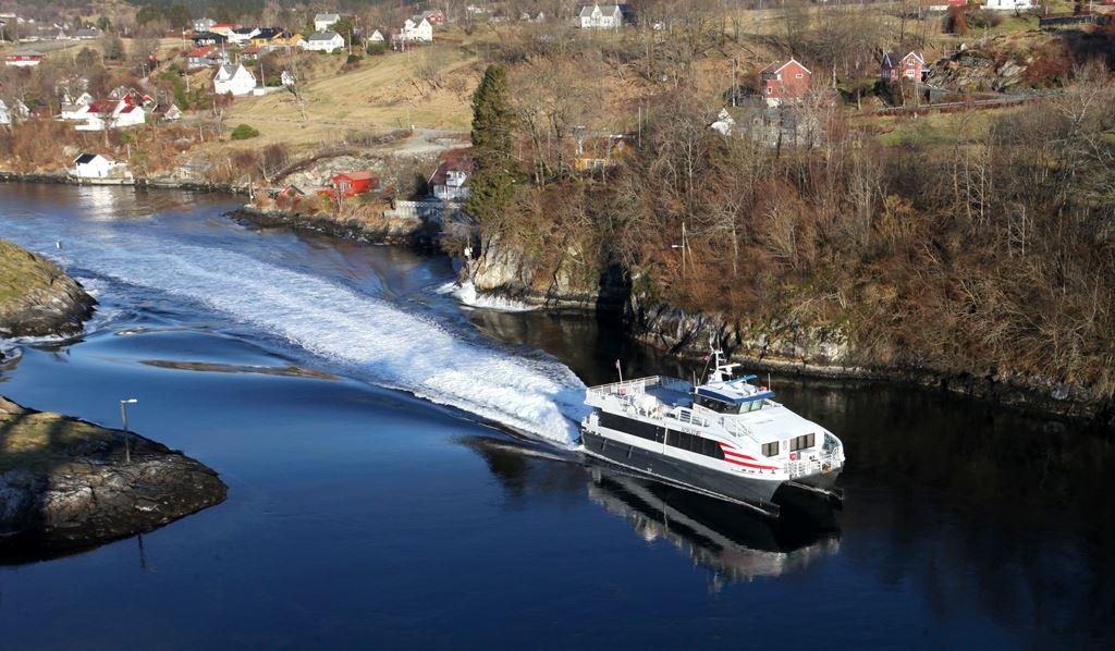 Scenic Whale Watching on catamaran, with marine biologist - Sørøya Havfiskecruise