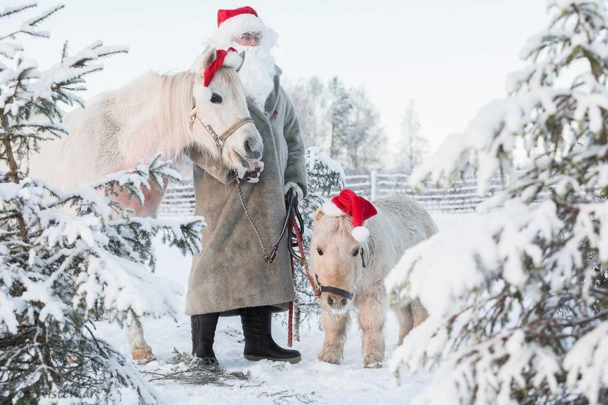 Eva Wistemar, Mickelbo gård vinterpark